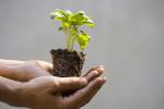 GrowthIntro.jpg