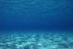 H2OceanIntro.jpg