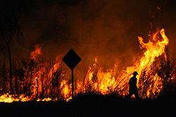 bushfire-intro-fintech.jpg